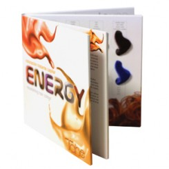 TAHE ENERGY COLOUR SHADES CHART (19 LOCKS)
